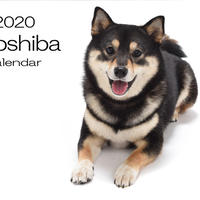 【送料無料】2020年『acoshiba』壁掛けカレンダー
