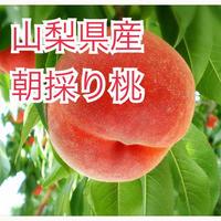 桃 小箱(1.5kg)★送料無料