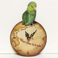 マメルリハ(ノーマル雌)-壁掛け時計