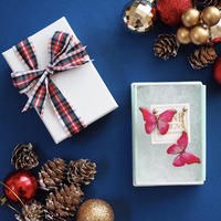 Christmas Gift Box / Red-Pink Butterfly Earrings, Titanium