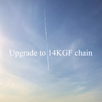 Upgrading to 14KGF chain [Necklace]