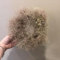tiny wreathe :  smoke tree