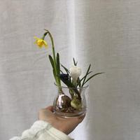 球根花と花瓶のSET