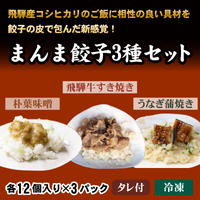 まんま餃子3種セット (各12個入り×3パック)