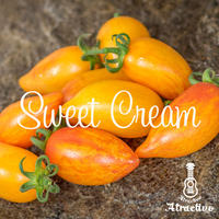 黄金色の縞模様が特長スイートクリームトマトの種