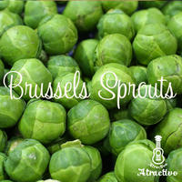 イタリア野菜ブリュッセルスプラウト(芽キャベツ)の種