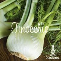 魅惑のイタリア野菜 フィノッキオの種