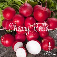 真っ赤なさくらんぼのような丸い可愛らしいラディッシュ「チェリーベル」の種