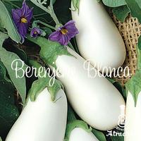 イタリア原産白ナス(ホワイトベル)の種