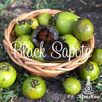 チョコレートプリンのような柿/ブラックサポテの種