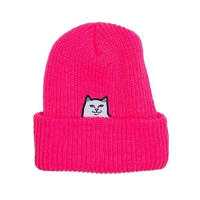 RIPNDIP  LORD NERMAL RIBBED BEANIE (PINK, BLUE, GOLD, BLACK)