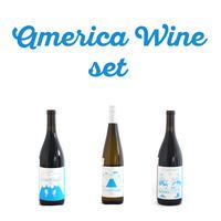 ザ アメリカ ワイン セット The American Wine set