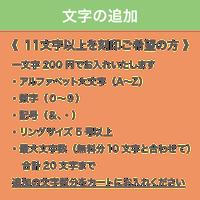 文字の追加(1文字)
