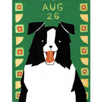 【日本画】8/26 Border collieボーダーコリア『366DAYS』