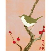 【日本画】3/9 Japanese bush warblerウグイス 『366DAYS』