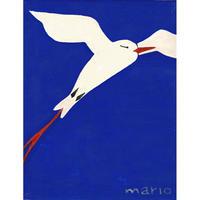 【日本画】3/10 Tropicbirdネッタイチョウ『366DAYS』