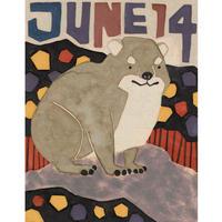 【日本画】6/14 Cape hyraxケープハイラックス『366DAYS』