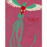 【日本画】6/17 Resplendent quetzalケツァール『366DAYS』