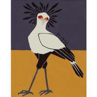 【日本画】5/20 Secretary birdヘビクイワシ『366DAYS』