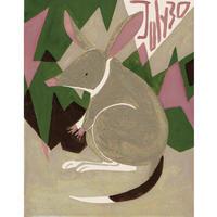 【日本画】7/30 Greater bilbyフクロウサギ『366DAYS』