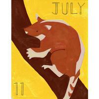 【日本画】7/11 Tree wallabyキノボリカンガルー 『366DAYS』