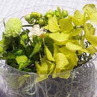 【おまかせグリーン系】ハーバリウム花材セット