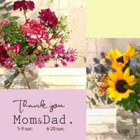 【Mother's Day】Thank You! ! MOM&DAD.FlowerGift