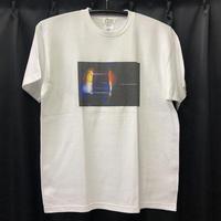 """Color Communications / """"Tone T-Shirt"""" White / M, XL"""
