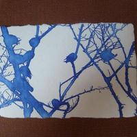 青のシリーズ版画5枚セット