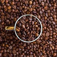 カフェ ドルチェ ブラジル  500g