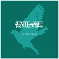 ZENITH ANGLE 【CD】