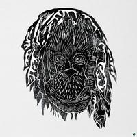 ALPHA STEPPA / RAISE THE ARK [LP]
