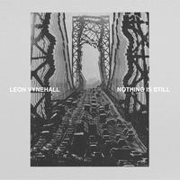 LEON VYNEHALL/Nothing Is Still [LP+DL]