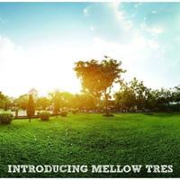 V.A.  / Introducing Mellow Tres [CD]
