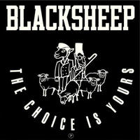 BLACK SHEEP / THE CHOICE IS YOURS [7inch]