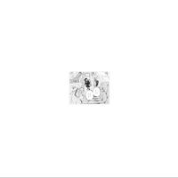スカート / トワイライト [LP]