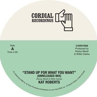 KAT BROTHERS / STAND UP FOR WHAT YOU WANT/STAND UP FOR WHAT YOU WANT(WITH LES BROWN) [7INCH]