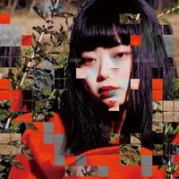 LAST ELECTRO / closer [CD]
