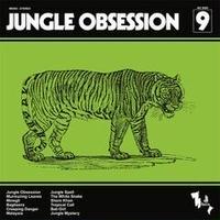 NINO NARDINI & ROGER ROGER / JUNGLE OBSESSION [LP]