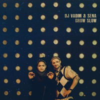 DJ VADIM & SENA / Grow Slow [CD]