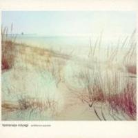 Tomonojo Miyagi  / Ambience Parade [CD]