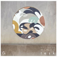 TESK / Spotless Minds [LP]
