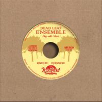 DJ BOZMORI / Dead Leaf Ensemble  -Dripwith Music6-    [MIX CD]