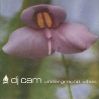 予約 - DJ CAM / UNDERGROUND VIBES [LP]