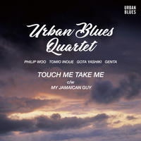 URBAN BLUES QUARTET / TOUCH ME TAKE ME-MY JAMAICAN GUY [7INCH]