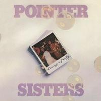 THE POINTER SISTERS / HAVING A PARTY [LP]