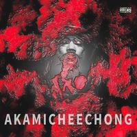AKAMICHEECHONG(NAGAHIDE×TA-TSU/GUS) / AKAMICHEECHONG [CD]