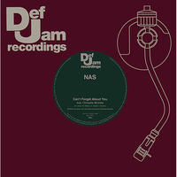 近日入荷 - Nas / Case - Can't Forget About You feat. Chrisette Michele [7inch]