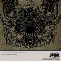 MANTIS / Collapsizm EP [12inch]