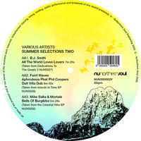 V.A / Summer Slections Two EP[12inch]